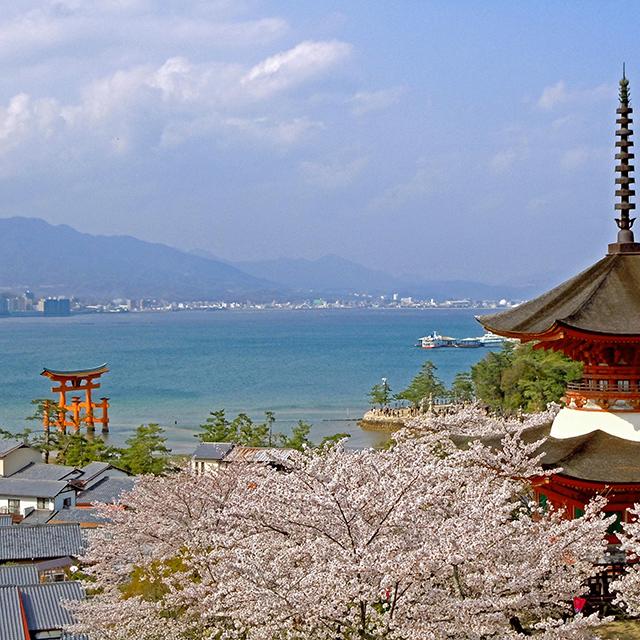 HIROSHIMA TOKUSHIMA]A deeply historical shrine and Buddhist temple